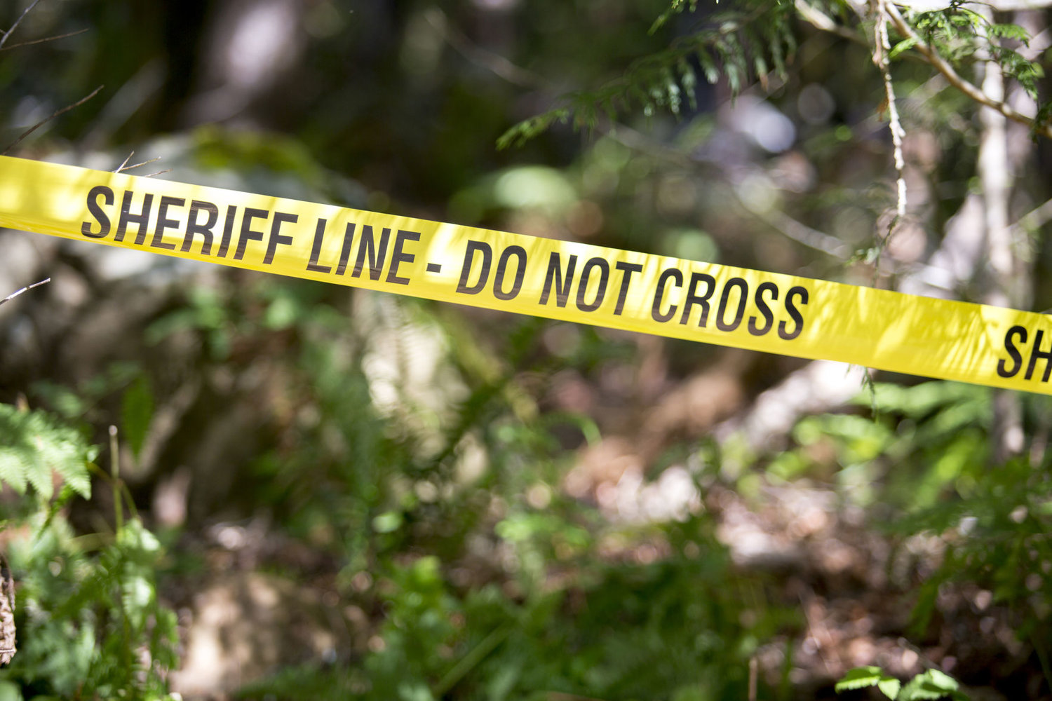 Update: Coroner releases names of adults in fatal Brinnon