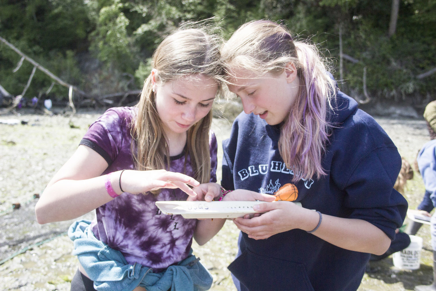 Blue Heron Middle School eighth-graders Jazmyn Taylor, left, and Macy Smith count and measure members of different fish species at Kilisut Harbor May 3.