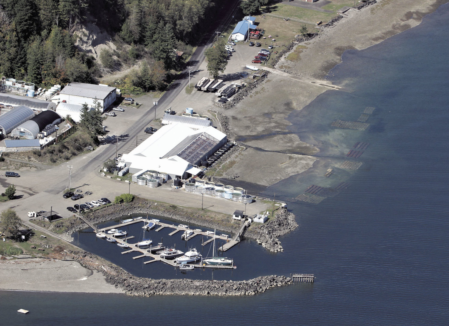 Coast Seafoods Company leases 57 acres from the Port of Port Townsend, next to the Herb Beck Marina on Quilcene Bay. The Olympic Forest Coalition, headquartered in Quilcene, has filed a federal lawsuit, arguing Coast Seafoods needs to filter its effluent from what the company boasts is the largest oyster hatchery in the world. Leader file photo