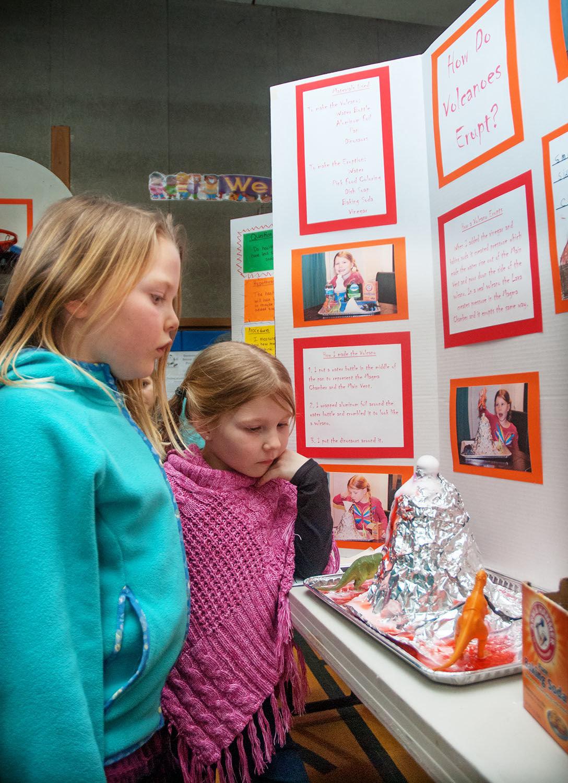 Volcano, rockets, crickets part of science fair | Port