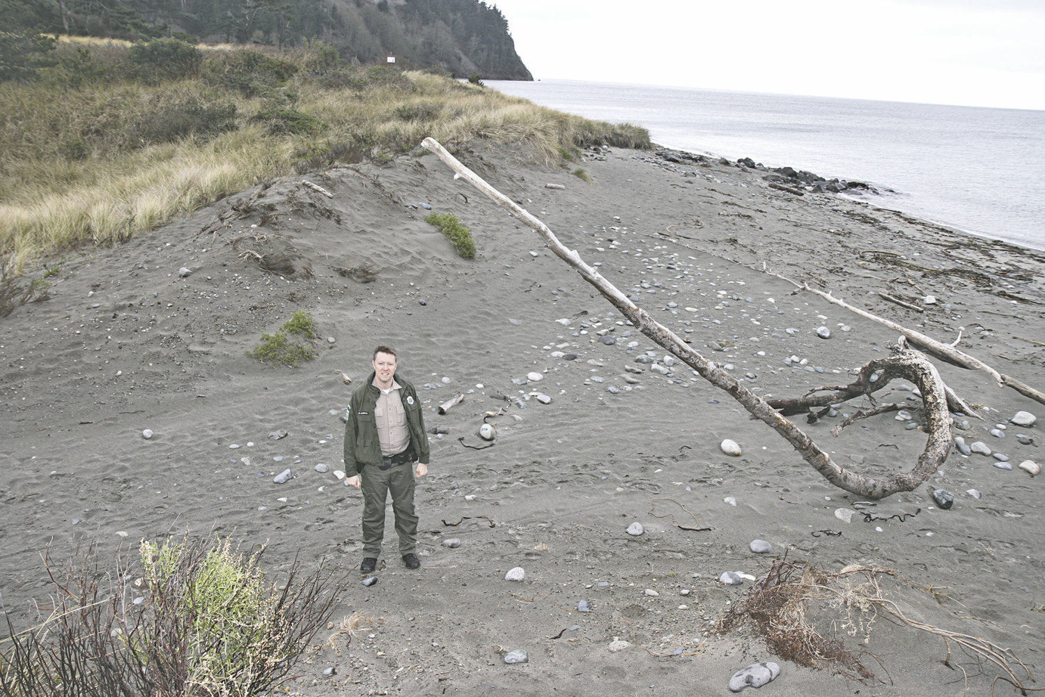 Ranger Brian Hageman stands in the dune breach between the Point Wilson Lighthouse and the Fort Worden State Park beach loop road. Years of people walking from a parking lot to the beach created a trail and a December 2015 storm pushed Strait of Juan de Fuca water through the dune, which brought the opening from 6 feet in width to about 20 feet. Photo by Patrick Sullivan