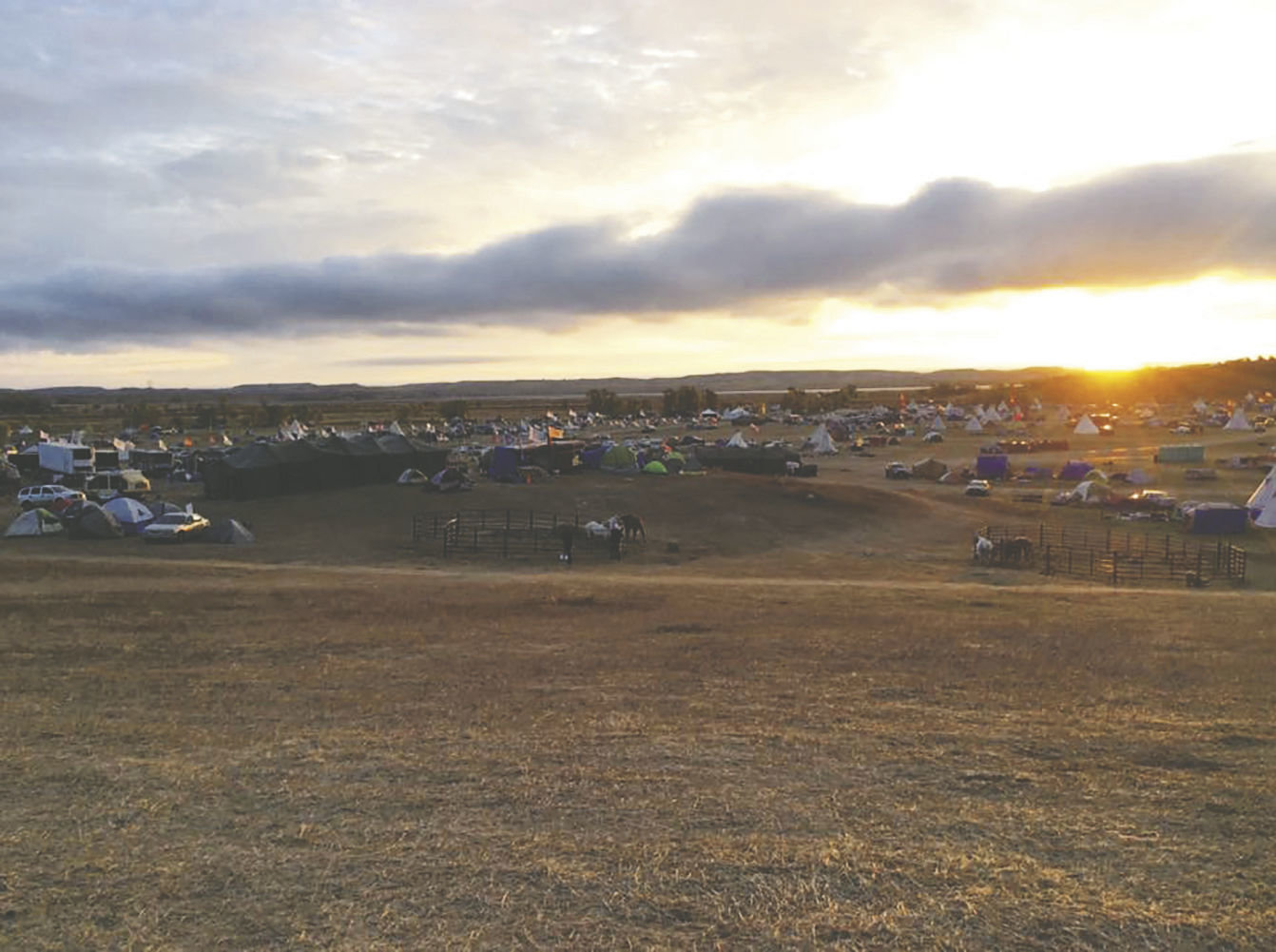 Standing tall for Standing Rock: Rally, benefits planned to