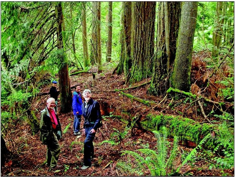 Supporters tour the Tarboo Forest conservation project in the Tarboo Valley near Quilcene. Pictured are (from left) Stephen Cunliffe, Hal Beattie, Janet Welch and Willi Smothers.
