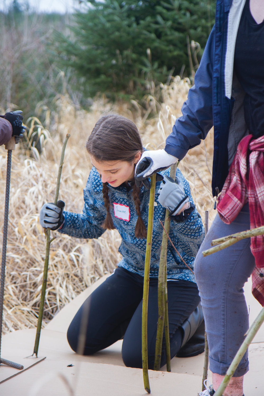 Jasmine Yearian instructs her fellow tree-planters on spacing willow cuttings.