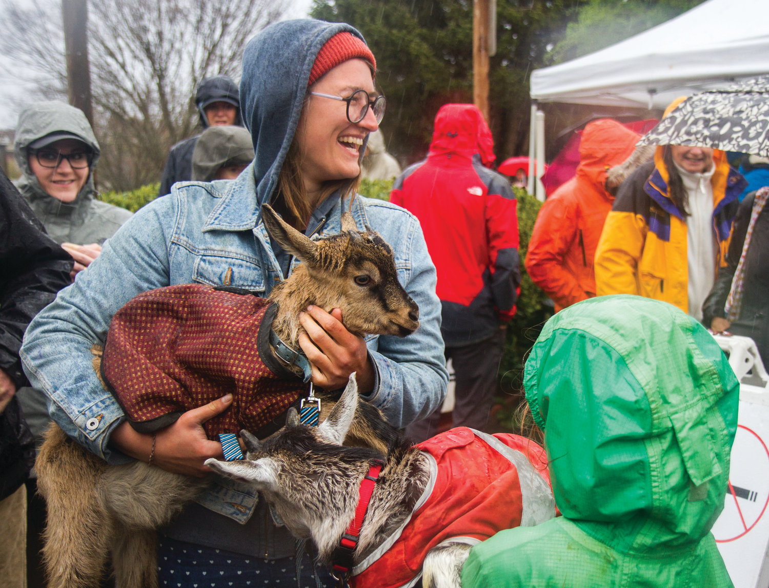 Lydia Vadopalas holds Mutsu, a baby goat from Mystery Bay Farm, who participated in the goat parade at the opening of the Port Townsend Farmers Market. See page A18 for more.