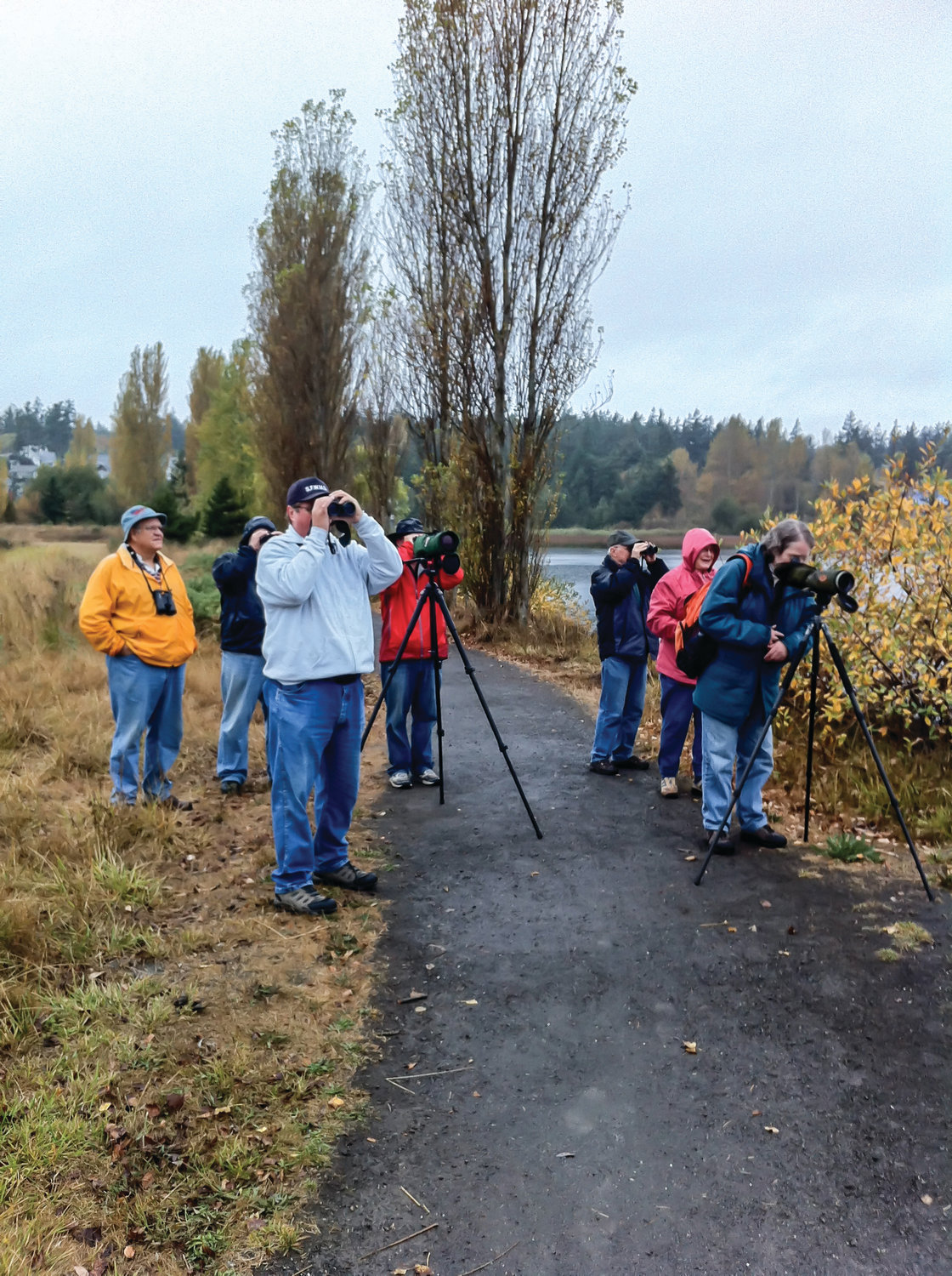 Admiralty Audubon members peer through their spotting scopes at Kah Tai Lagoon.