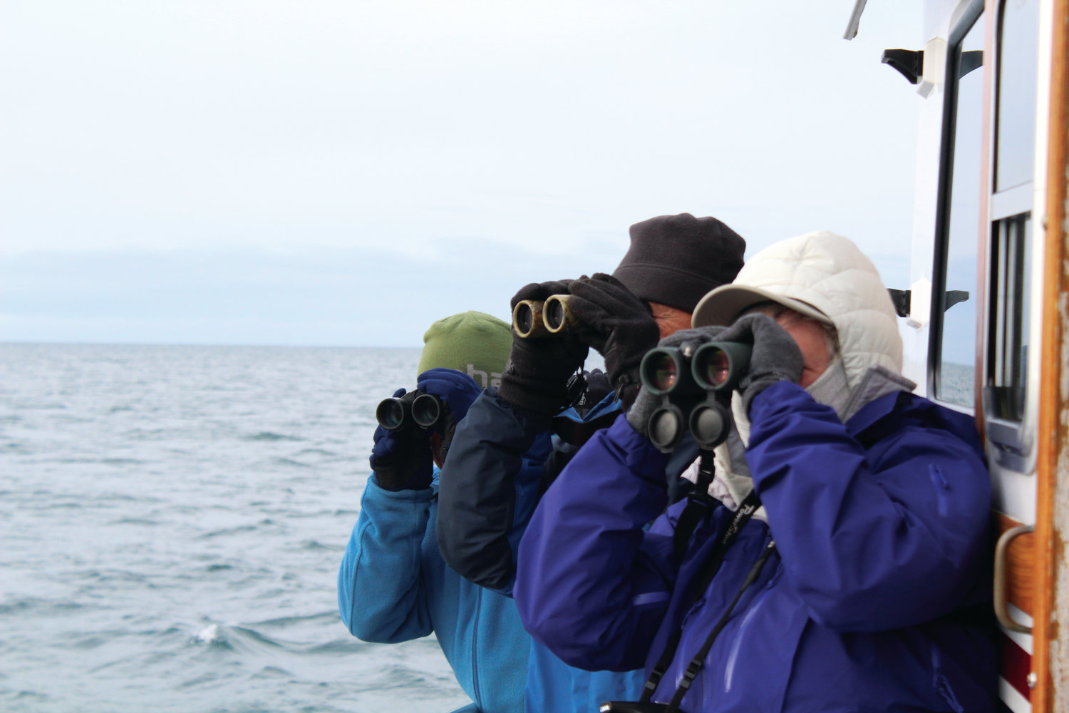Participants Judith White, Cynthia Zenner and Gary Bullock, all from Sequim, search the sea for a sighting of their favorite birds while on the fall Protection Island cruise in Nov. 2018.