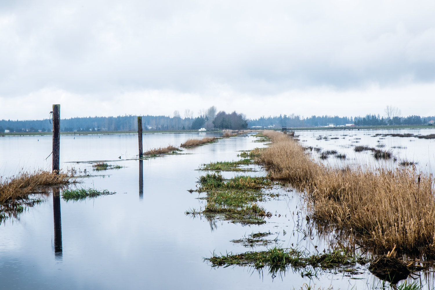 Hundreds of acres are under water