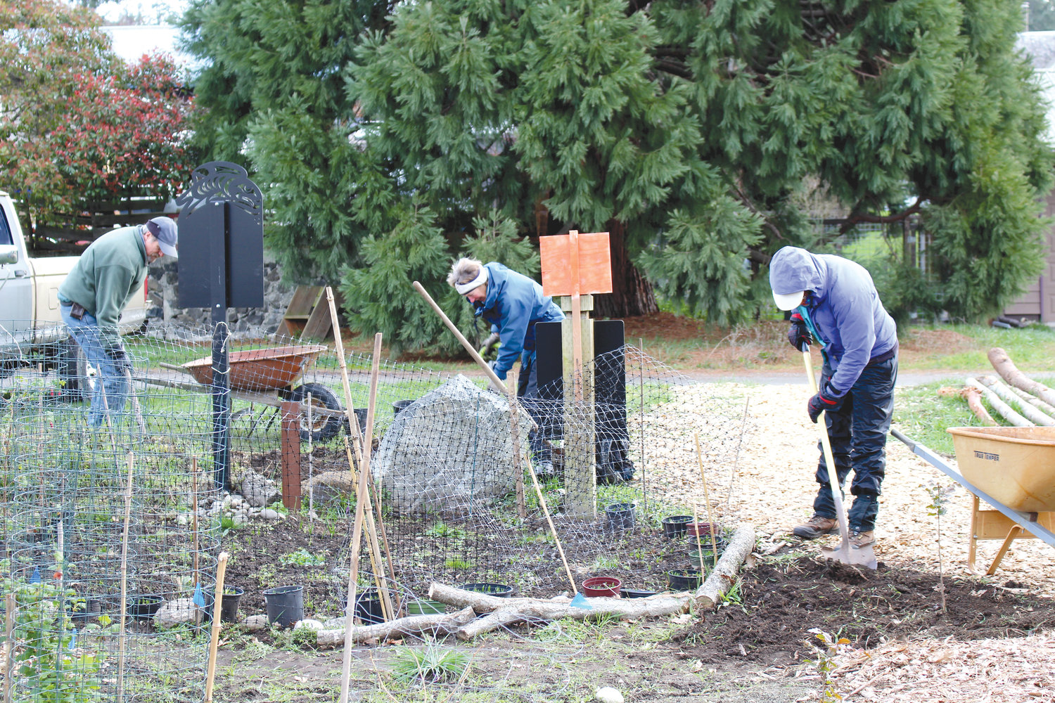 A group of neighbors, volunteers and native plant enthusiasts are planting a native prairie at Froggy Bottoms near Cedar and Pacific streets in Port Townsend.
