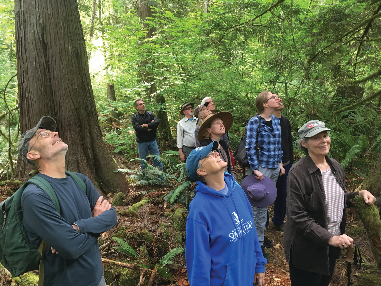 Admiring the trees, a group of supporters learn about a 21-acre forest addition to NWI's Tarboo Wildlife Preserve, protected with easements held by the U.S. Navy and Jefferson Land Trust.