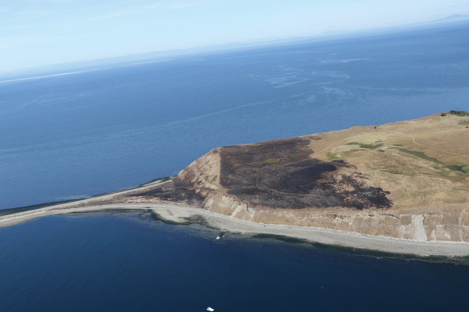 An aerial photo taken during a survey of seal haulouts shows the aftermath of a fire on Protection Island.