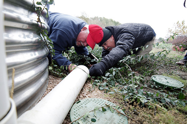 Jose Dolagaray of Arrow Exterminators (left) and Larry King of MosquitoNix Pest Control search a drainage pipe for signs of rodent pests as part of Texas Rodent Academy at the Texas A&M AgriLife Research and Extension Center at Dallas.