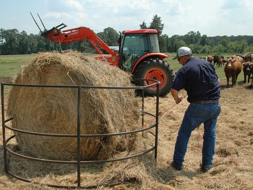 Dry conditions and declining pastures and rangelands are pushing many beef producers to provide hay and other supplemental feed to herds. The state climatologist said conditions are brewing in the tropical Pacific that could produce La Nina weather patterns and a warmer, drier winter.