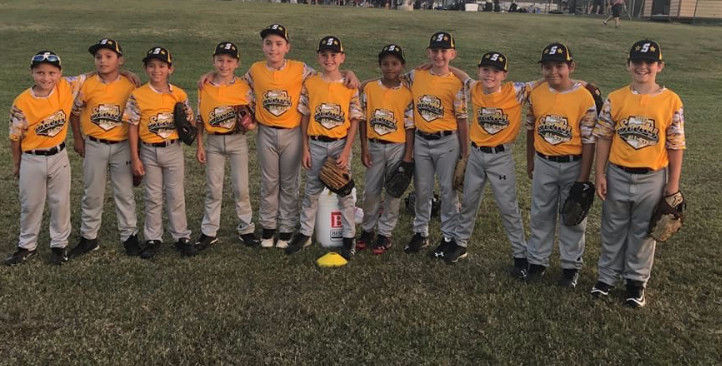 The Greater Sealy Little League 9-year old All Stars were eliminated from the District 13 tournament last week in Schulenburg after two losses in the double elimination format. The players are, from left, Jackson Sodolak, Jadon Hernandez, Steven Schwartz, Jackson Blanks, Trevor Hrachovy, Garrison Ward, Elijah Sanders, Brady Burttschell, Jackson Ellis, Mauricio Nieto and Campbell Cochran.