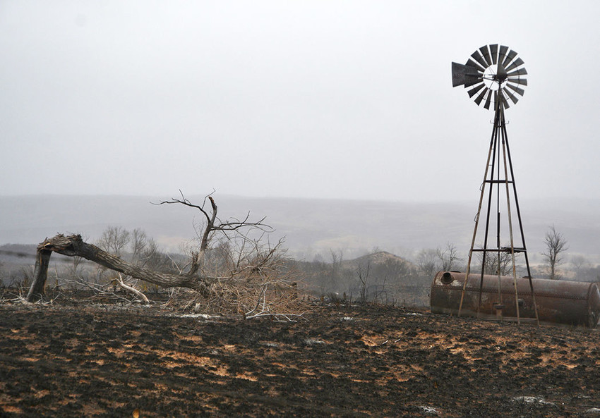 Lost grazing on burned out grass, replacement fences and damaged stock facilities all add up in the economic losses.