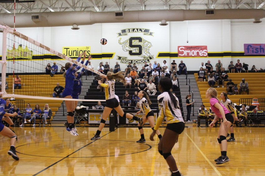 Sealy volleyball