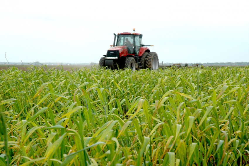 An agricultural symposium focused on cost savings will be held April 17 in San Antonio.