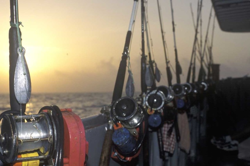 Commercial for-hire charter boats or headboats are available along the Texas coast, and provide tackle, bait, and deckhand.