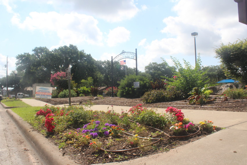 The Bluebonnet Master Gardener Association led by Renee Kofman and funded by Leroy Zapalac have begun to replant a large portion of the flowers and bushes at Levine Family Park.