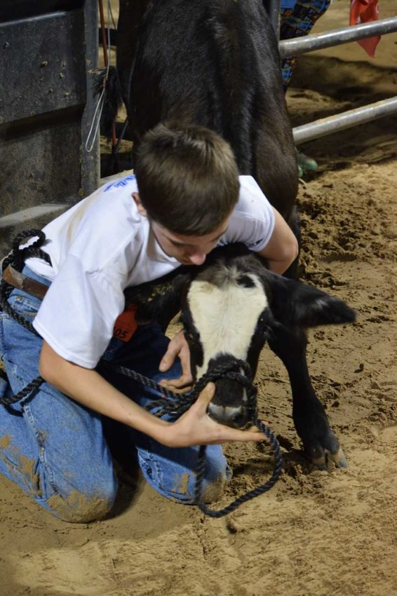 The calf scramble will once again be part of the Austin County Fair.