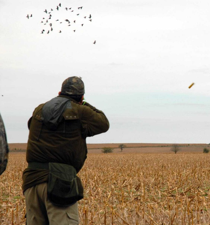 A dove hunter fires away at a flock as the ejected shell sails to his right. The heavy coat pictured won't be needed this week, but loose-fitting clothes and plenty of water or Gatorade are required equipment in 100-degree heat. Shotguns must be plugged to no more than a three-shell capacity. If a dog accompanies hunters, water, shade, and avoiding overexertion are mandatory to avoiding a canine tragedy.