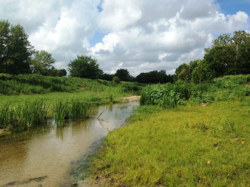 A Mill Creek Watershed Partnership meeting focused on rainwater harvesting will be held Nov. 5 at the Texas A&M AgriLife Extension Service office in Bellville.