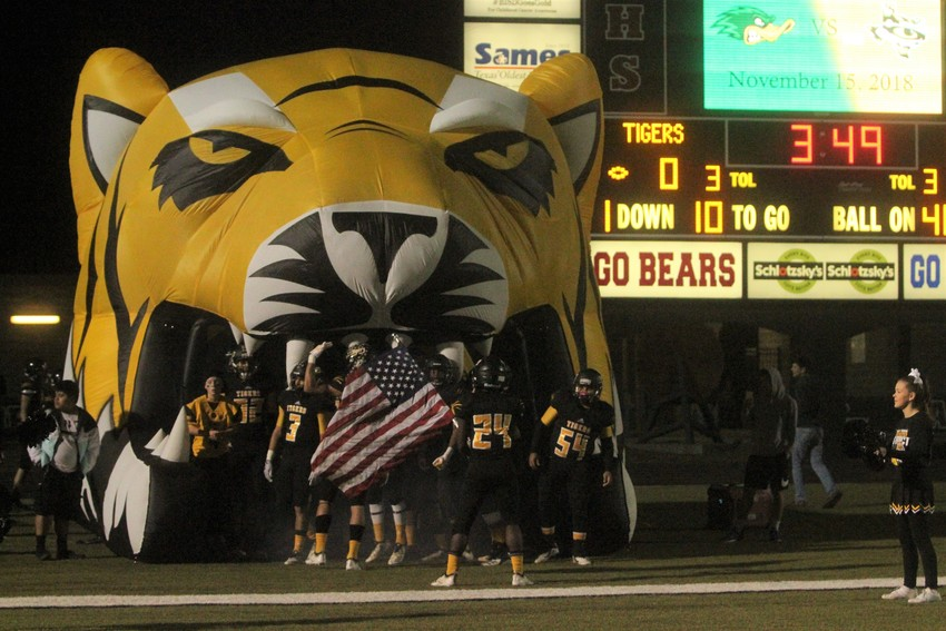 The Tigers' focus has landed on the Greyhounds and the Area Championship this Friday at 2.