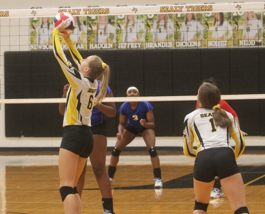 Breanna Brandes (6) was voted as the best setter in the district as only a freshman.