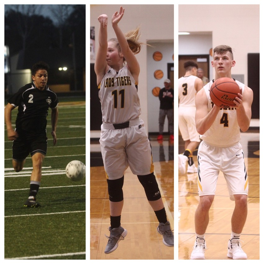 Ricky Avila, Evelyn Harrington and Reece Novicke propelled Sealy to the trifecta Friday night, grabbing three wins in as many chances for the Tigers.