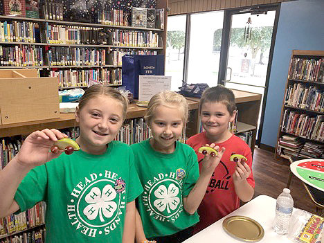 Grace Lischka, Bailey Locke and Harper Lischka all spent time assisting 4-H with teaching and leading a food and nutrition educational program with several local youths at the Knox Memorial Library in Wallis.