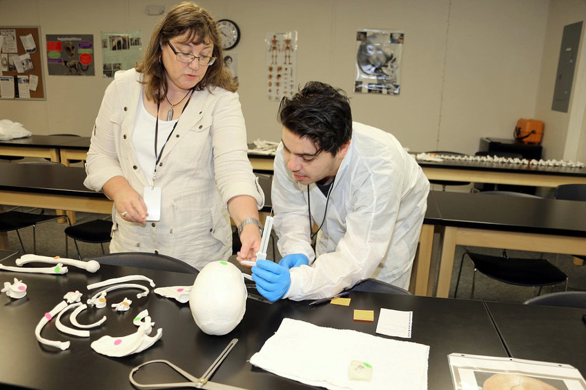 Professor Dawn Marshall, left, and student Mason Boone examine an artificial skull in an anthropology class at Blinn College.