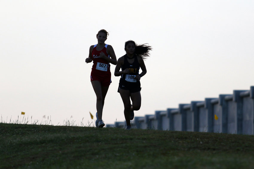 Courtney Westphal from Columbus, left, and Hailey Arteaga from Sealy are silhouetted as they crest the hill during the girls race at the cross country meet Friday morning at Sealy High School.