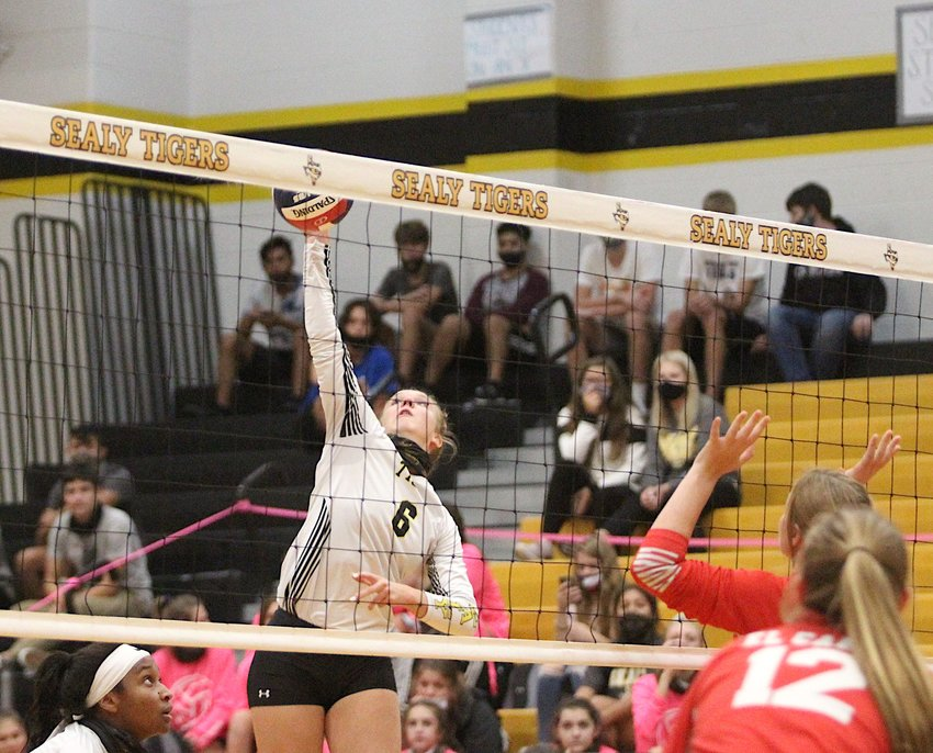 Lady Tiger junior setter Breanna Brandes was all over the scoresheet by the end of Sealy's sweep over El Campo last Tuesday at home. She finished with 24 assists, seven digs, six kills, one block and one ace to help extend a winning streak to close the regular season.