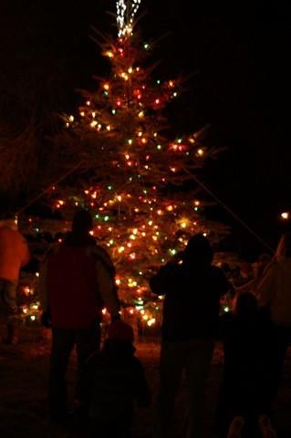 Rose City Tree Lighting