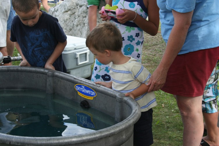 Kameron Kubik, 3, of Oscoda, looks at the fish in a live-well.