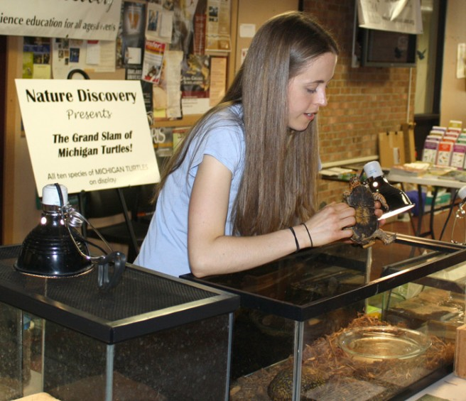 Adriane Collins, of Nature Discovery in Williamston, shows an Eastern box turtle to a visitor at the festival.