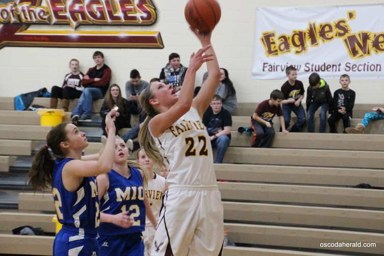 Fairview senior Jenna DeJarlais puts up a shot.