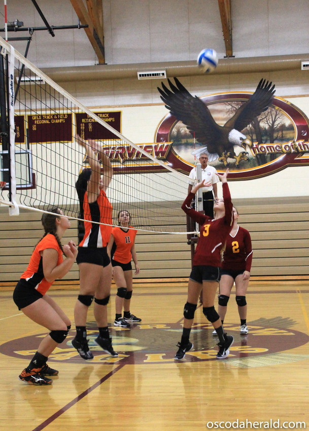 Mariah Largent sets the ball for a teammate to spike on Rogers City.