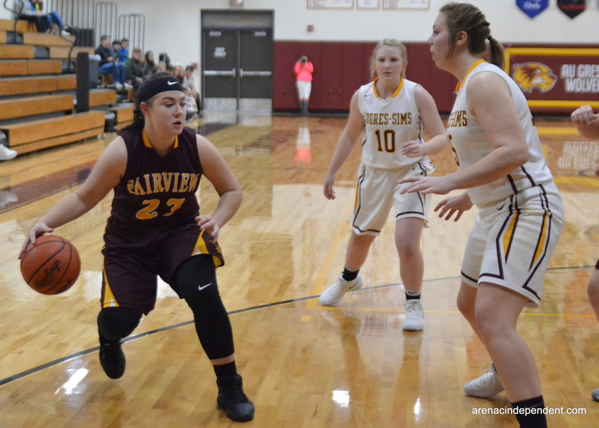 Fairview's Katelyn Bowers looks for her offensive options.