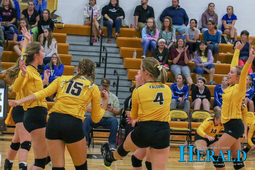 The Lady Falcons celebrate after winning the second set against Kalkaska.
