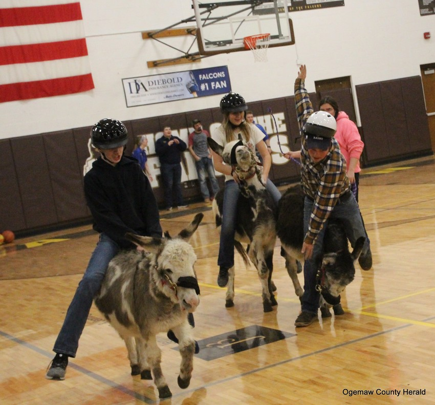 Three riders try to stay upright as their donkeys go on a stampede.
