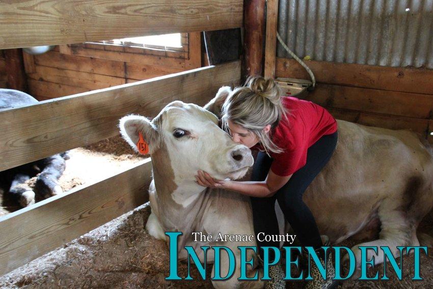 Morgan Mrozinski kisses her cow Dave during last year's fair.