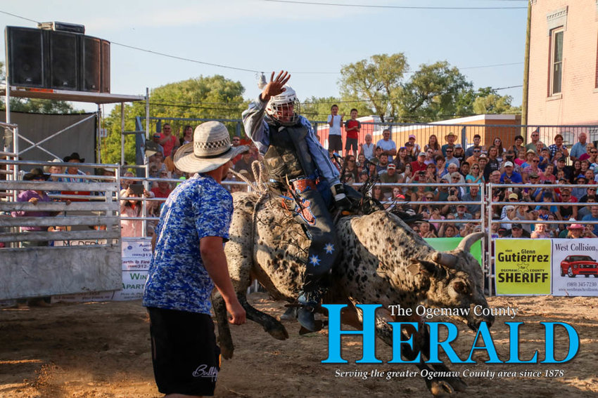 The bull rears its hind legs up to try and buck the rider from its back.