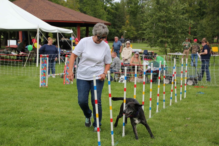 Joanne Battishill coaches a dog through a contest at last year's Mutt March.