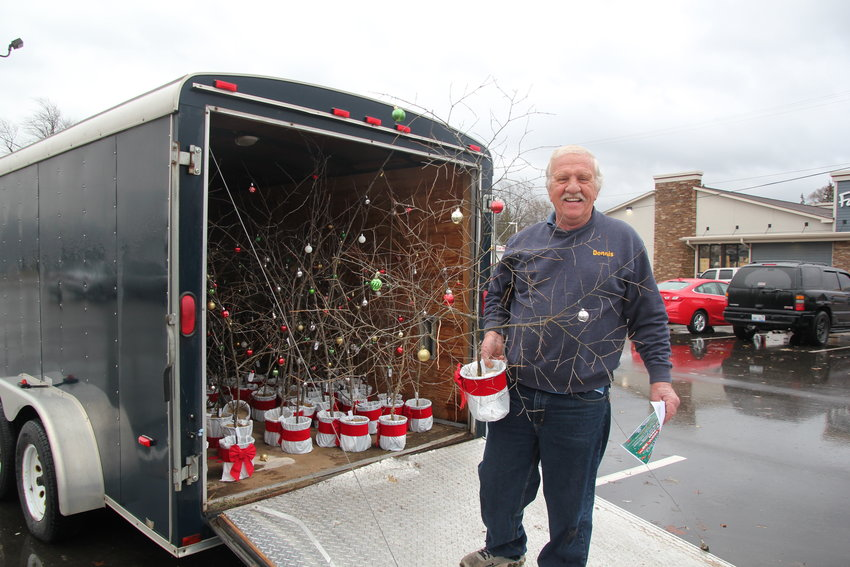 Volunteer Dennis Whitney delivers Charlie Brown Christmas trees to businesses in Standish. Whitney's trailer is filled with 105 Christmas trees to be delivered.