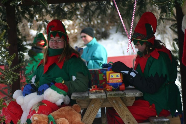 "Girl Scout Troop 1207's entry ""The North Pole"" took second place and $100 in the Snow City parade."