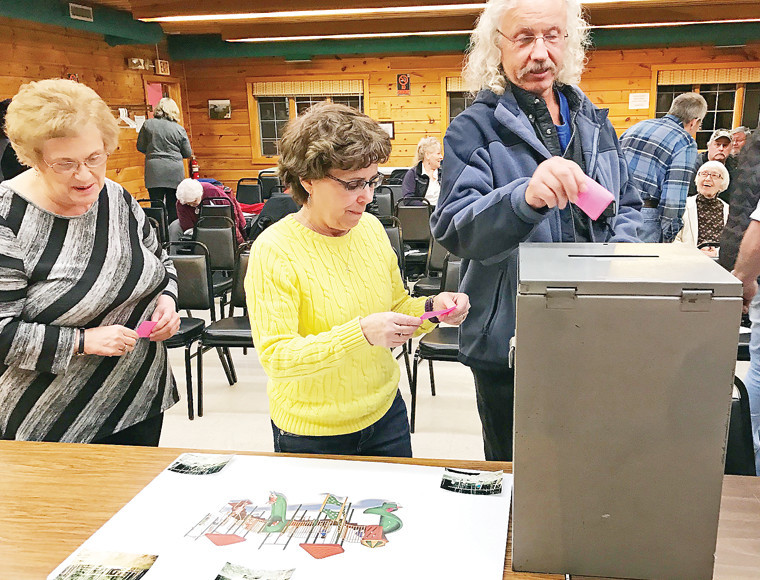Greenwood Township residents vote during their annual meeting Tuesday night.
