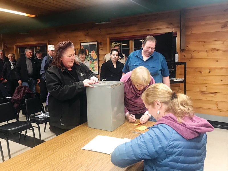 Voters cast their votes on the proposed 2021 levy for Greenwood Township.