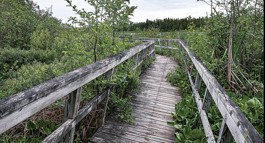 The 28-year-old Mickey Elverum Bog Walk in Orr is set to undergo a makeover next year, thanks in no small part to a matching grant from the Department of Iron Range Resources and Rehabilitation.