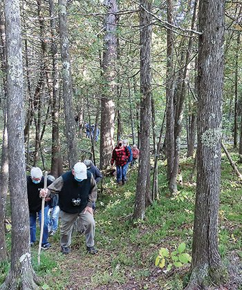 A group hikes along the Ancient Cedars Trail.